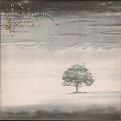 Genesis Wind And Wuthering (Remastered) (Vinyl LP)