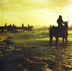 Foals Holy Fire (CD)