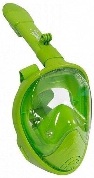 Agama Dory Kid Green
