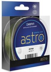 Delphin Astro 8 Green