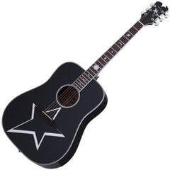 Schecter Robert Smith RS-1000 Busker Acoustic Black
