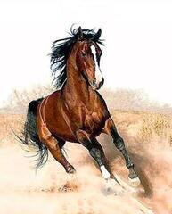 Gaira Galloping Horse M1182