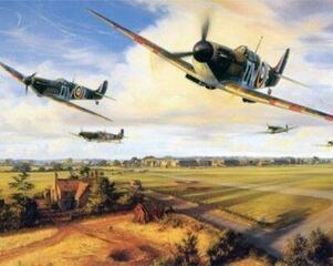 Gaira Spitfire Formation