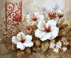 Gaira M445KV Flowers-Still Life