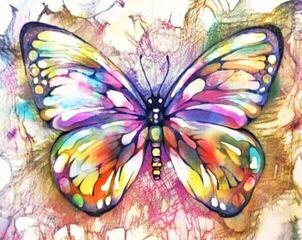 Gaira M991854ZP 40 x 50 cm Butterfly 1