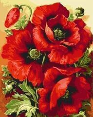 Gaira M1111KV 40 x 50 cm Poppies 2