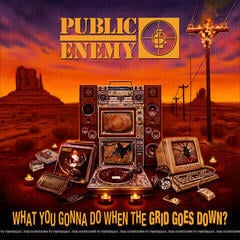 Public Enemy What You Gonna Do When The Grid Goes Down? (CD)