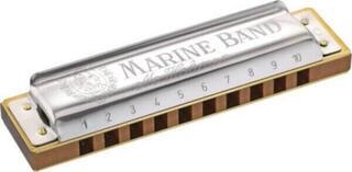 Hohner M1896056x Diatonic harmonica