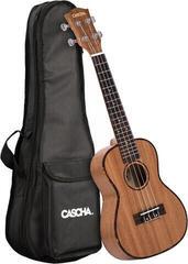 Cascha HH 2036 DE Premium Mahogany Concert Ukulele Bundle