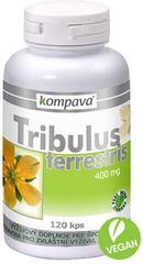 Kompava Tribulus Terrestris 120