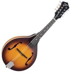 Recording King RAM-3-TS A-Style Mandolin