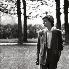 David Sylvian Brilliant Trees (LP)
