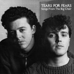 Tears For Fears Songs From The Big Chair Hudobné CD
