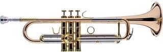 Schagerl Academica B-Trumpet TR-620L