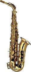 Schagerl Academica Alto Saxophone A-900L Goldlack