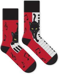 Soxx Piano Cat