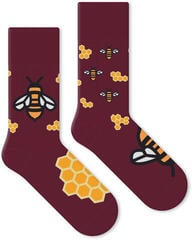 Soxx Bee My Honey Music Socks (Unboxed) #932305