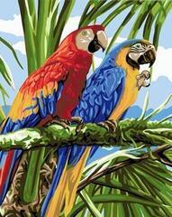 Gaira M1264 40 x 50 cm Parrots