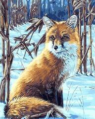 Gaira Fox M1641
