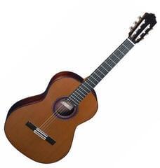 Almansa Conservatory 434