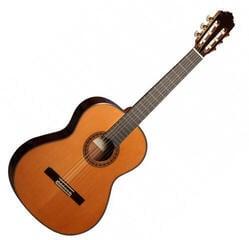 Almansa Conservatory 457 M Traditional