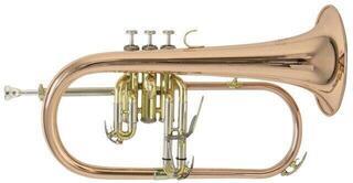 Bach FH501 Bb-Flugelhorn