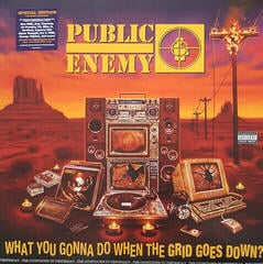 Public Enemy What You Gonna Do When The Grid Goes Down (LP) Stereo