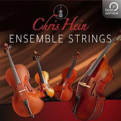 Best Service Chris Hein Ensemble Strings (Digital product)