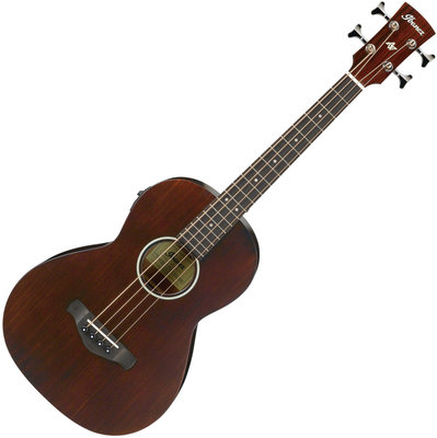 Ibanez AVNB1E Brown Violin Semi-Gloss