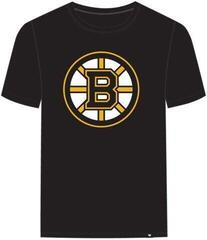 Boston Bruins NHL Echo Tee