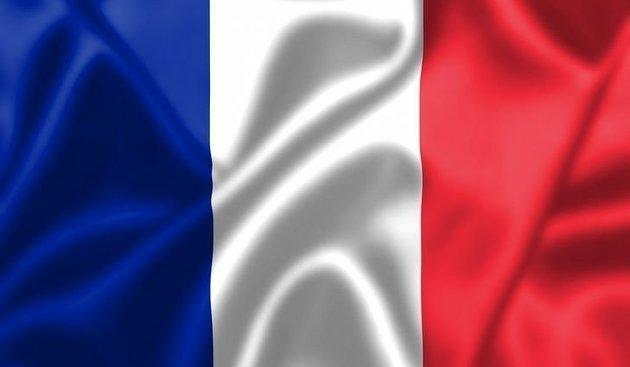 Talamex Národná vlajka - Francúzsko 20x30cm