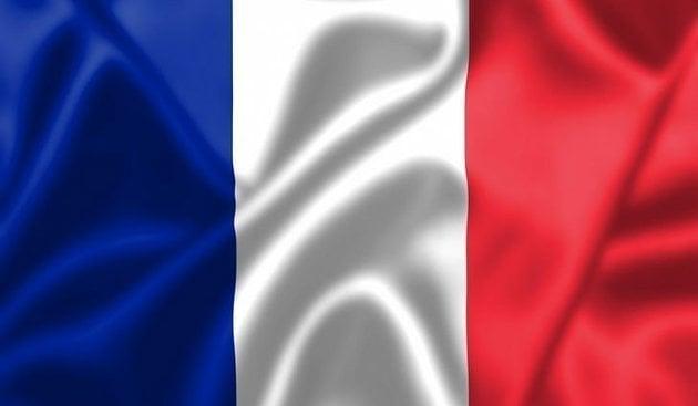 Talamex France Steag național