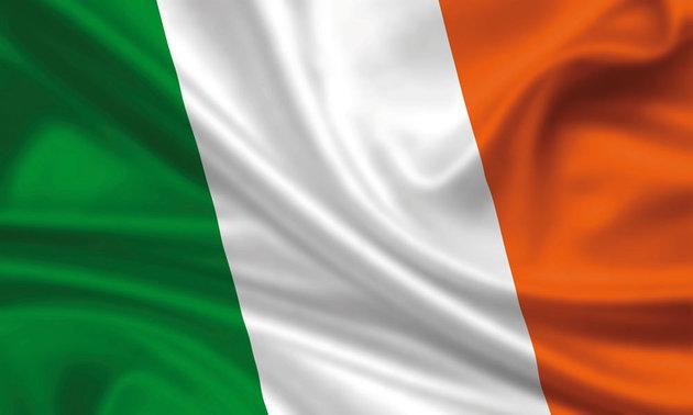 Talamex Flag Ireland 30x45 cm