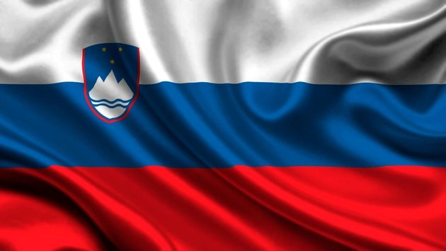 Talamex Flag Slovenia 20x30 cm