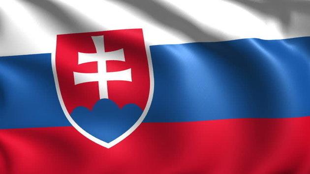 Talamex Flag Slovakia 30x45 cm