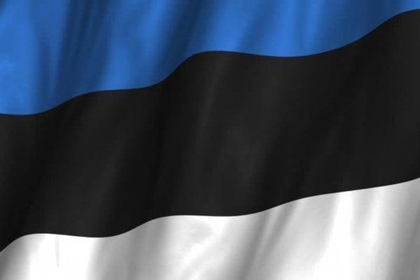 Talamex Národná vlajka - Estónsko 30x45cm