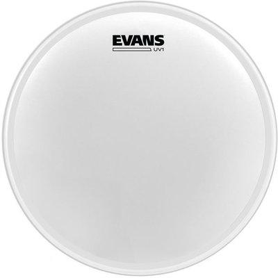 Evans BD20UV1