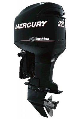 Mercury OptiMax 225