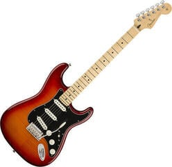 Fender Player Series Stratocaster PLS TOP MN Aged Cherry Burst