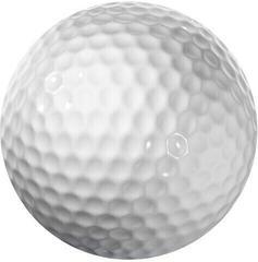 Longridge Blank 2 Piece Golf Ball - White