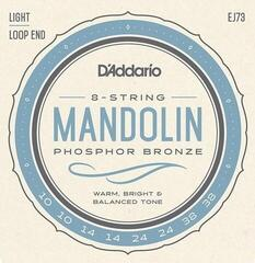 D'Addario EJ73 Phosphor Bronze Mandolin Strings Light 10-38