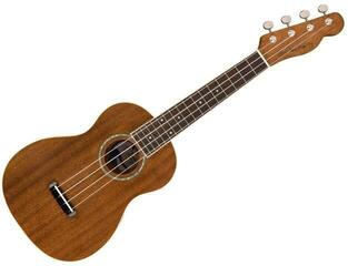Fender  (B-Stock) #920933