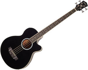 Washburn AB5B-A-U Black