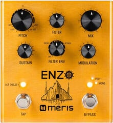 Meris Enzo Multi-Voice Oscillator Synthesizer