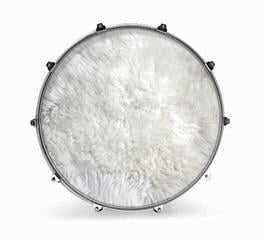 Evans 20'' FABRIC POLAR BEAR FUR
