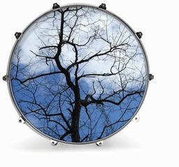 Evans 22'' NATURE TREE 1