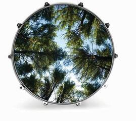 "Evans INK24NTRTRE2 24"" NATURE TREE 2 Resonant Drum Head"
