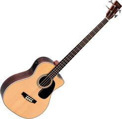 Sigma Guitars BRC-28E